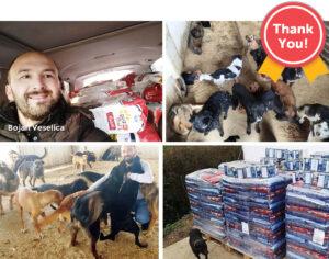 Bark Ark, Bosnia says Thank you