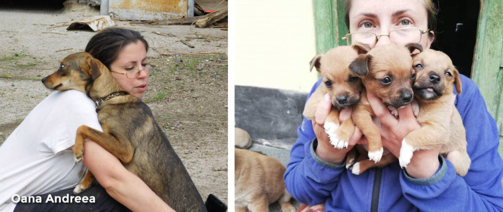 Oana Andreea and her rescued puppies