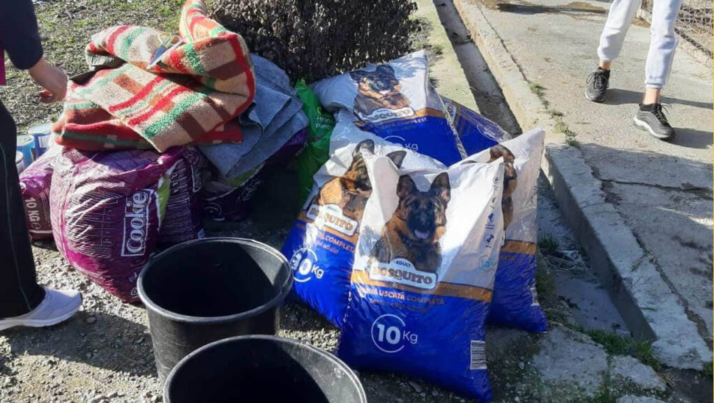 Donated dog foods