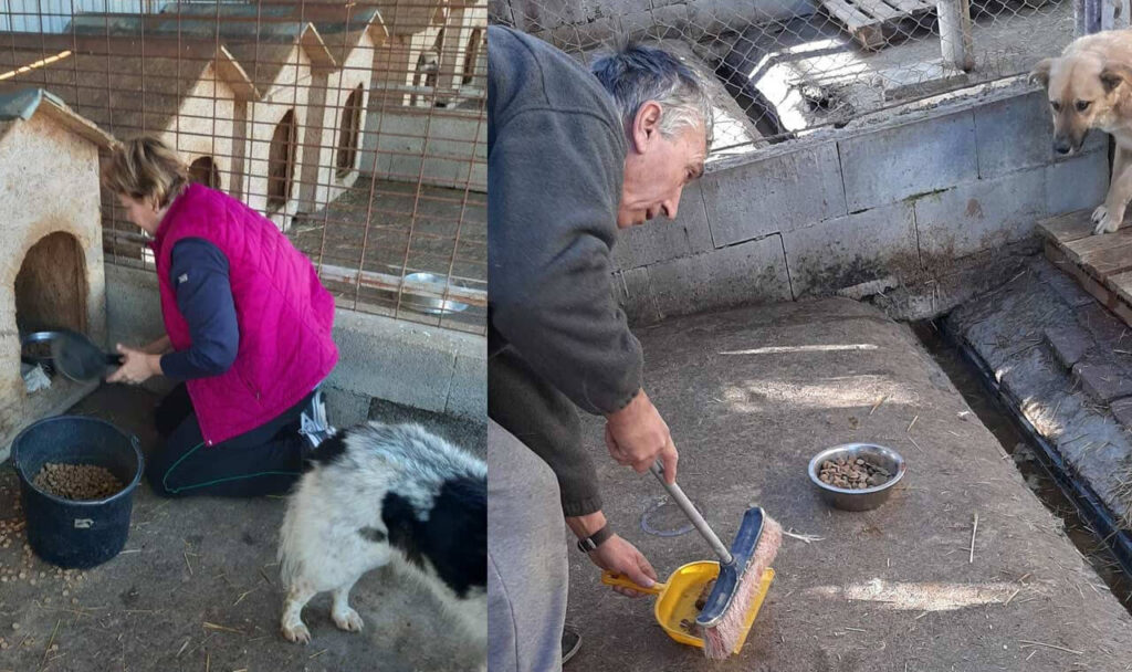 Claudia Filip and her husband X cleaning at the shelter