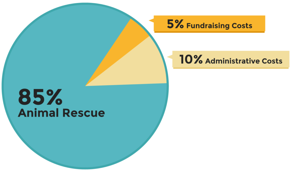 Harmony Fund's Financial pie chart for 2020