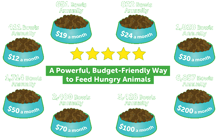 A Powerful, Budget-Friendly Way to Feed Hungry Animals
