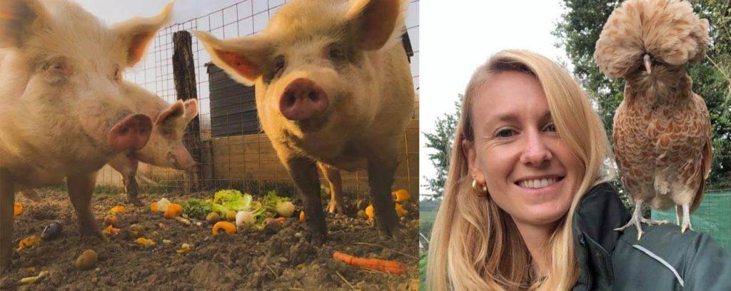 Rescuer Daniela and farm animals (pigs & chicken)