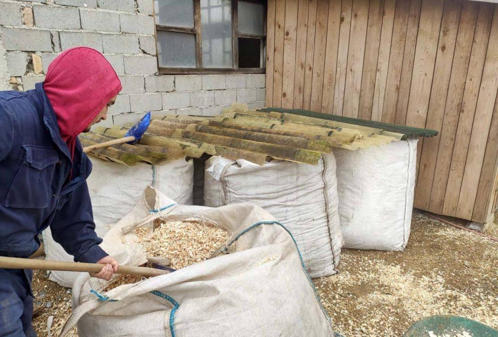 Bark ark worker taking care of the shelter