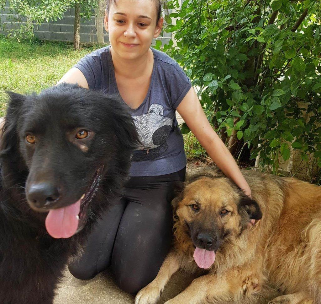 Dalida Kozlic and her rescue dogs